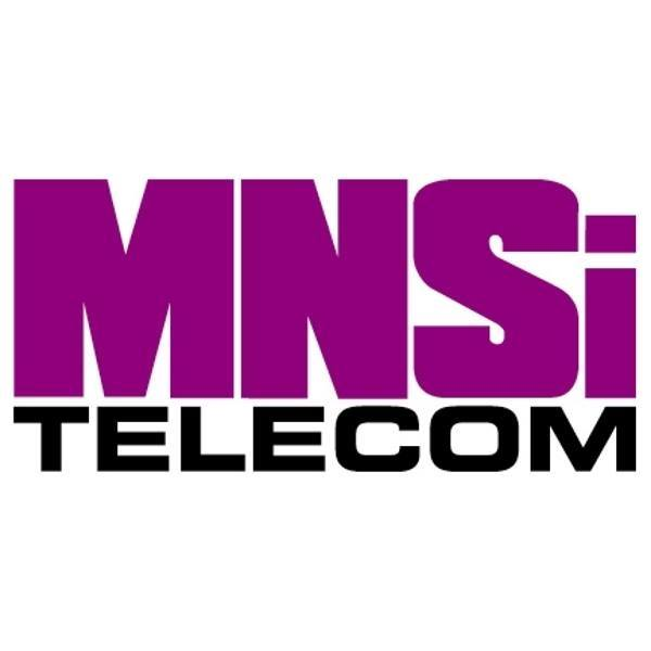 Mnsi Home Services